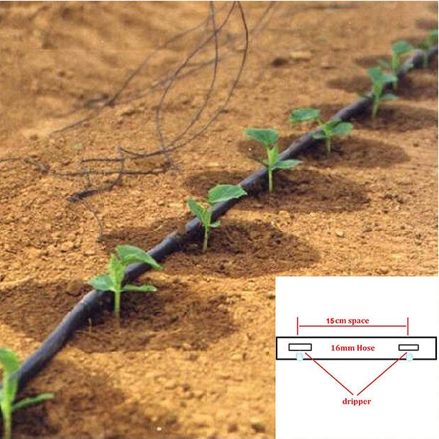Agriculture-Vegetable-Garden-Drip-Irrigation-Belt-Watering-System-Garden-Drip-Irrigation-Tape