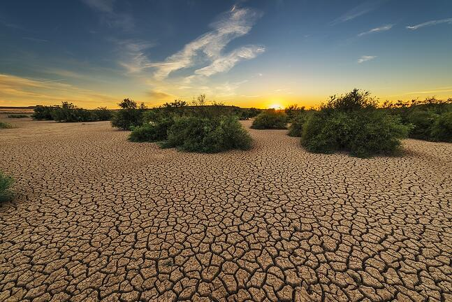 drought-1675729_1280
