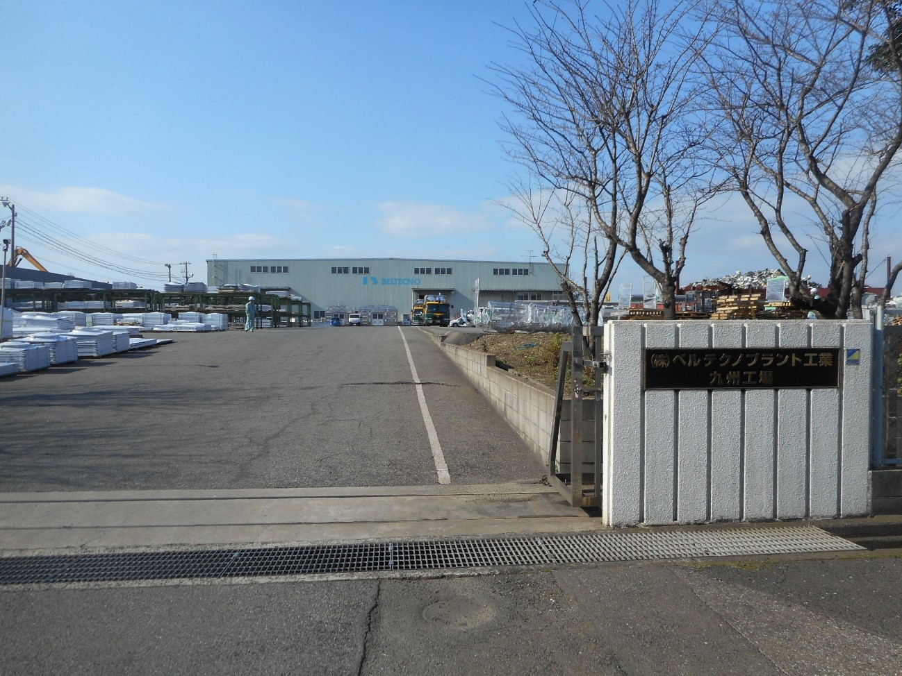 kyushu plant.jpg